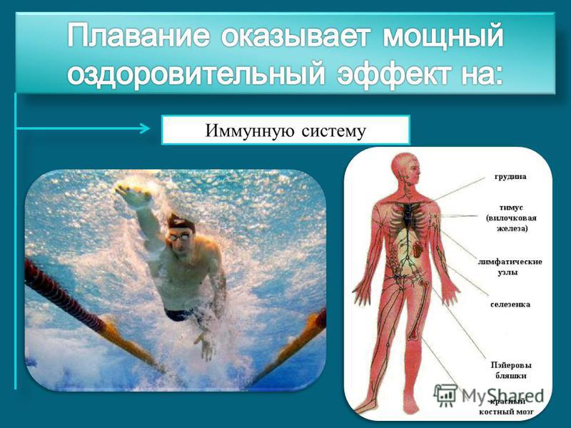 Иммунную систему