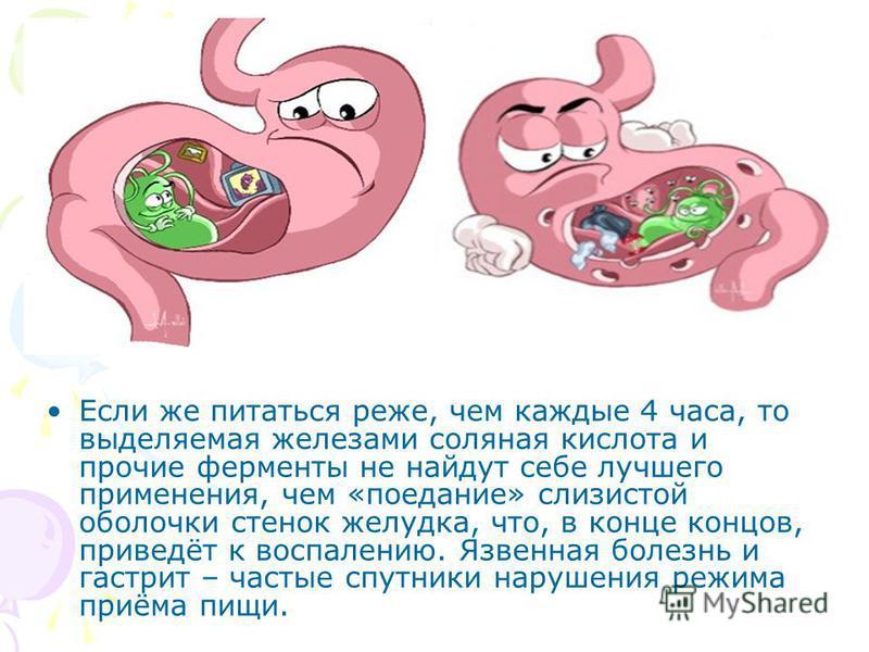 Если же питаться реже, чем каждые 4 часа, то выделяемая железами соляная кислота и прочие ферменты не найдут себе лучшего применения, чем «поедание» слизистой оболочки стенок желудка, что, в конце концов, приведёт к воспалению. Язвенная болезнь и гас
