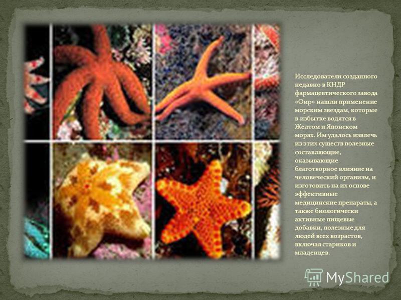 Среди морских звёзд встречаются и ядовитые особи. Их яд опасен для человека.Если на неё наступить,яд попадает в кожу человека и если его немедленно не откачать,последствия могут быть самыми страшными.