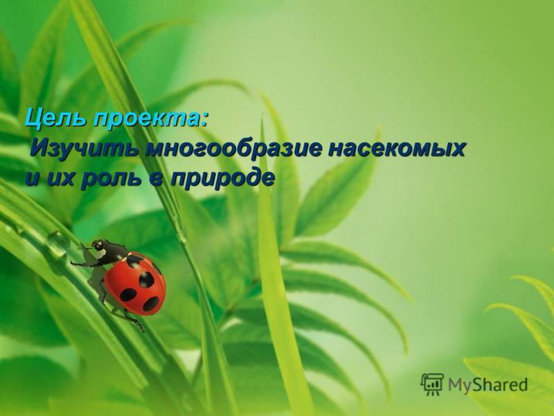 Цель проекта: Изучить многообразие насекомых Изучить многообразие насекомых и их роль в природе
