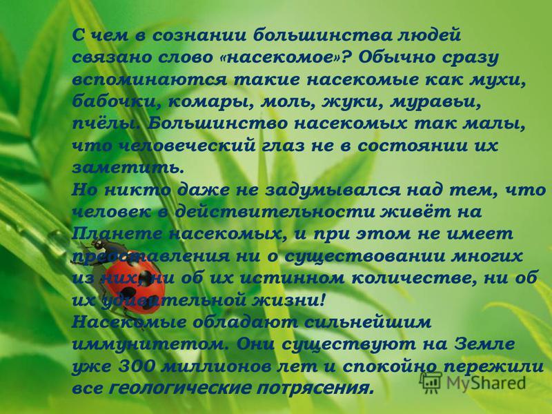 С чем в сознании большинства людей связано слово «насекомое»? Обычно сразу вспоминаются такие насекомые как мухи, бабочки, комары, моль, жуки, муравьи, пчёлы. Большинство насекомых так малы, что человеческий глаз не в состоянии их заметить. Но никто