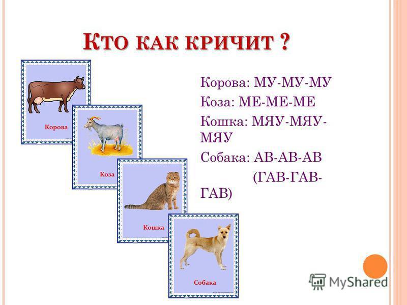 К ТО КАК КРИЧИТ ? Корова: МУ-МУ-МУ Коза: МЕ-МЕ-МЕ Кошка: МЯУ-МЯУ- МЯУ Собака: АВ-АВ-АВ (ГАВ-ГАВ- ГАВ)