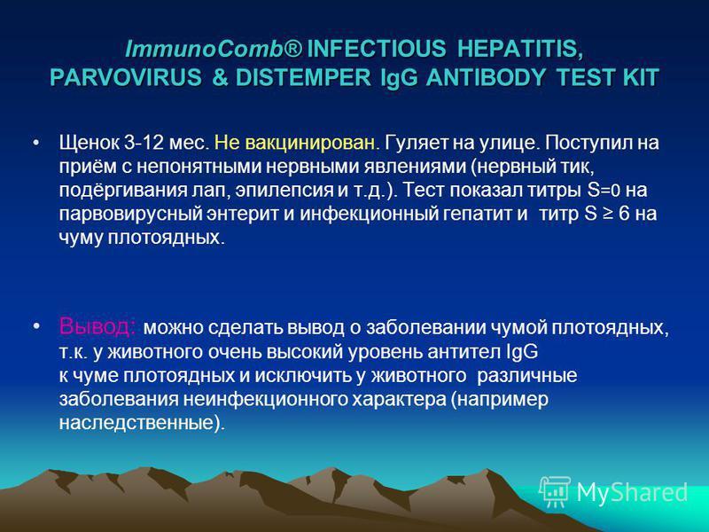 ImmunoComb® INFECTIOUS HEPATITIS, PARVOVIRUS & DISTEMPER IgG ANTIBODY TEST KIT Щенок 3-12 мес. Не вакцинирован. Гуляет на улице. Поступил на приём с непонятными нервными явлениями (нервный тик, подёргивания лап, эпилепсия и т.д.). Тест показал титры