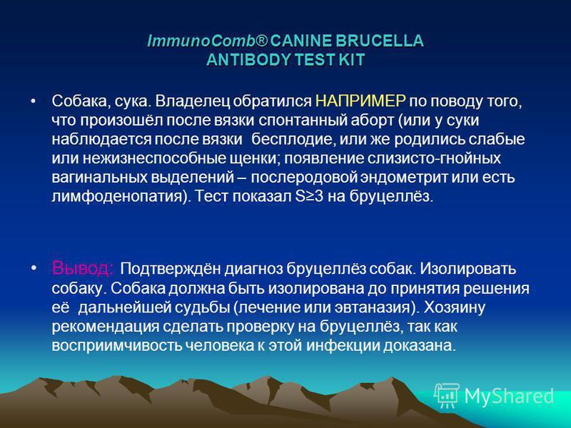 ImmunoComb® CANINE BRUCELLA ANTIBODY TEST KIT Собака, сука. Владелец обратился НАПРИМЕР по поводу того, что произошёл после вязки спонтанный аборт (или у суки наблюдается после вязки бесплодие, или же родились слабые или нежизнеспособные щенки; появл