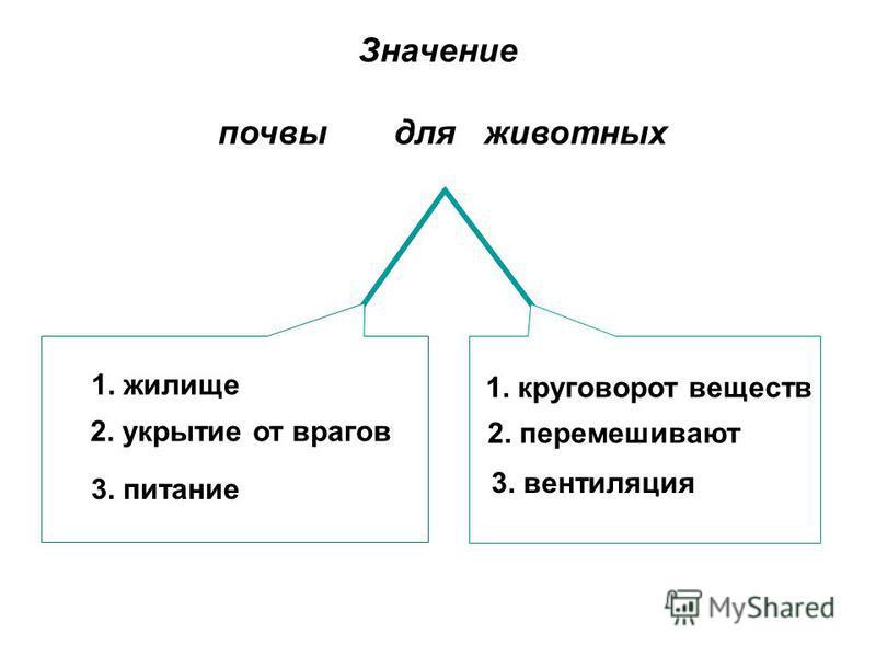 Значение почвы для животных 1. жилище 2. укрытие от врагов 3. питание 1. круговорот веществ 2. перемешивают 3. вентиляция