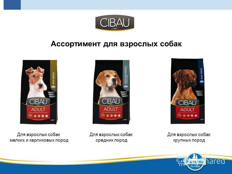 Ассортимент для взрослых собак Для взрослых собак мелких и карликовых пород Для взрослых собак средних пород Для взрослых собак крупных пород