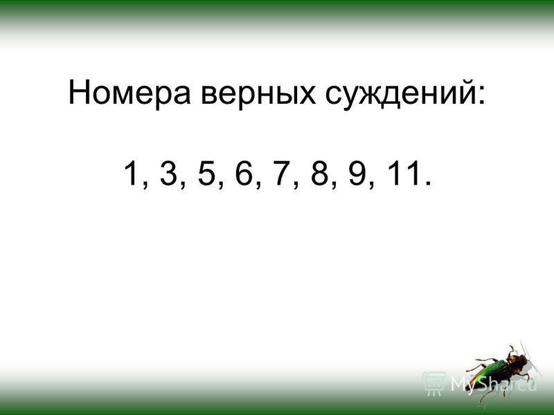 Номера верных суждений: 1, 3, 5, 6, 7, 8, 9, 11.