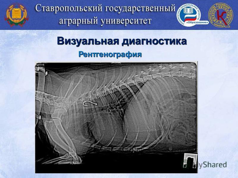 Рентгенография Визуальная диагностика
