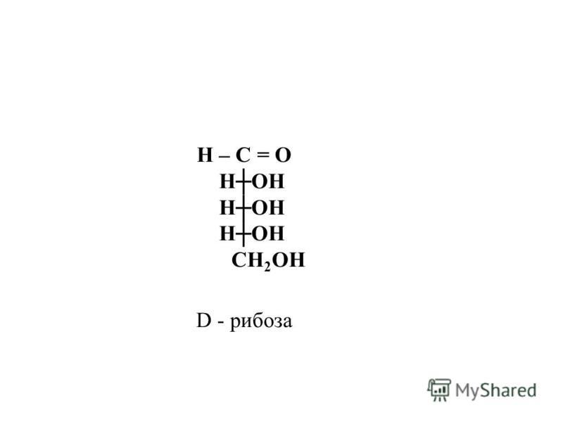 Н – С = О НОН СН 2 ОН D - рибоза