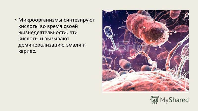 Микроорганизмы синтезируют кислоты во время своей жизнедеятельности, эти кислоты и вызывают деминерализацию эмали и кариес.