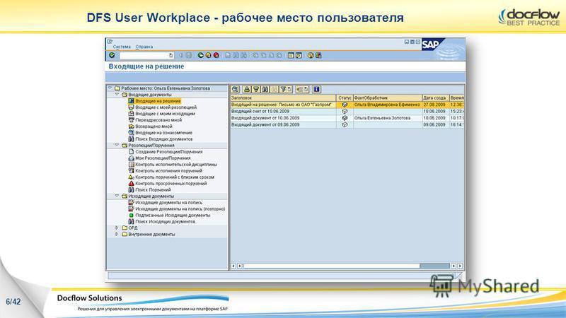 DFS User Workplace - рабочее место пользователя 6/42