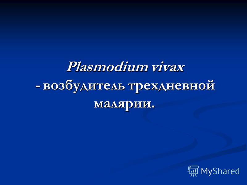 Plasmodium vivax - возбудитель трехдневной малярии.