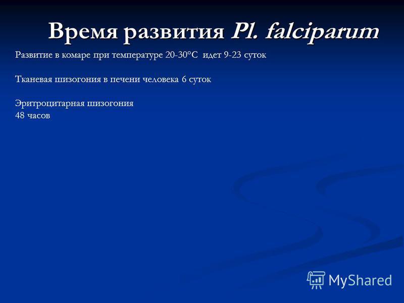 Время развития Pl. falciparum Развитие в комаре при температуре 20-30°С идет 9-23 суток Тканевая шизогония в печени человека 6 суток Эритроцитарная шизогония 48 часов