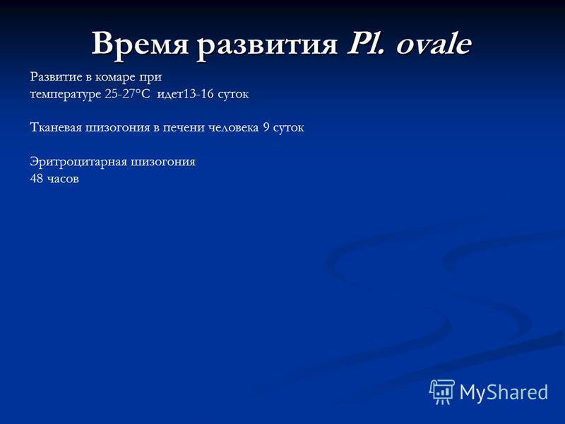 Время развития Pl. ovale Развитие в комаре при температуре 25-27°С идет 13-16 суток Тканевая шизогония в печени человека 9 суток Эритроцитарная шизогония 48 часов