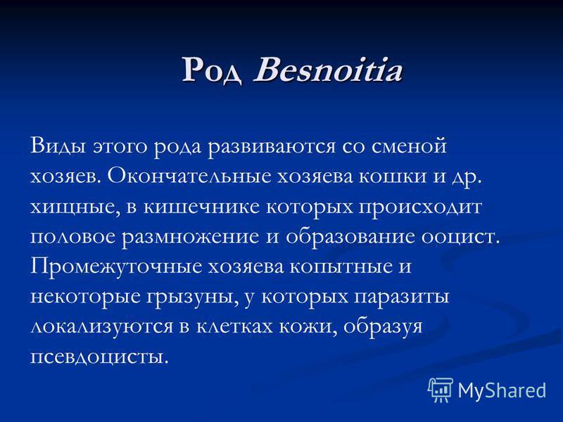 Род Besnoitia Виды этого рода развиваются со сменой хозяев. Окончательные хозяева кошки и др. хищные, в кишечнике которых происходит половое размножение и образование ооцист. Промежуточные хозяева копытные и некоторые грызуны, у которых паразиты лока