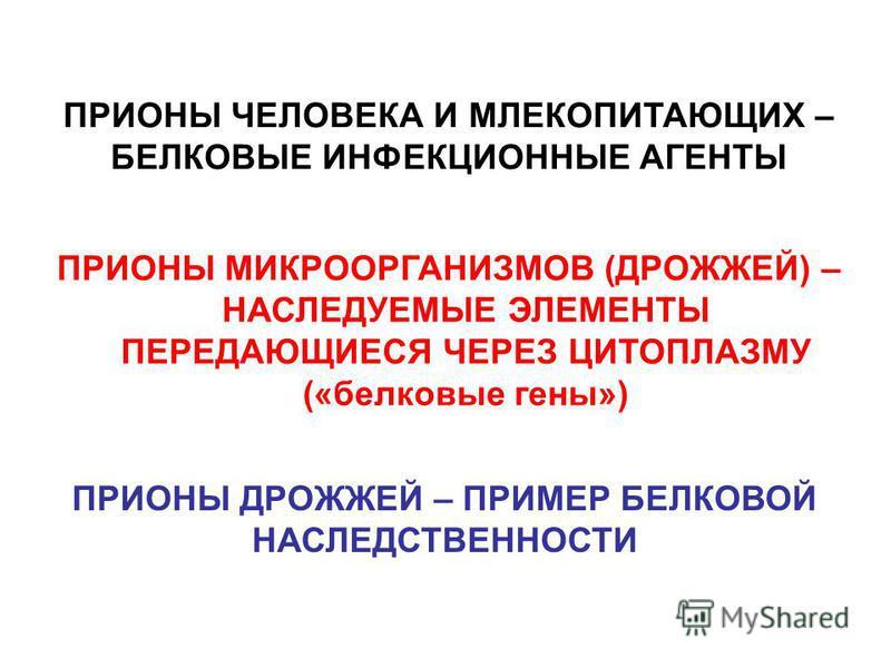 ПРИОНЫ ЧЕЛОВЕКА И МЛЕКОПИТАЮЩИХ – БЕЛКОВЫЕ ИНФЕКЦИОННЫЕ АГЕНТЫ ПРИОНЫ МИКРООРГАНИЗМОВ (ДРОЖЖЕЙ) – НАСЛЕДУЕМЫЕ ЭЛЕМЕНТЫ ПЕРЕДАЮЩИЕСЯ ЧЕРЕЗ ЦИТОПЛАЗМУ («белковые гены») ПРИОНЫ ДРОЖЖЕЙ – ПРИМЕР БЕЛКОВОЙ НАСЛЕДСТВЕННОСТИ