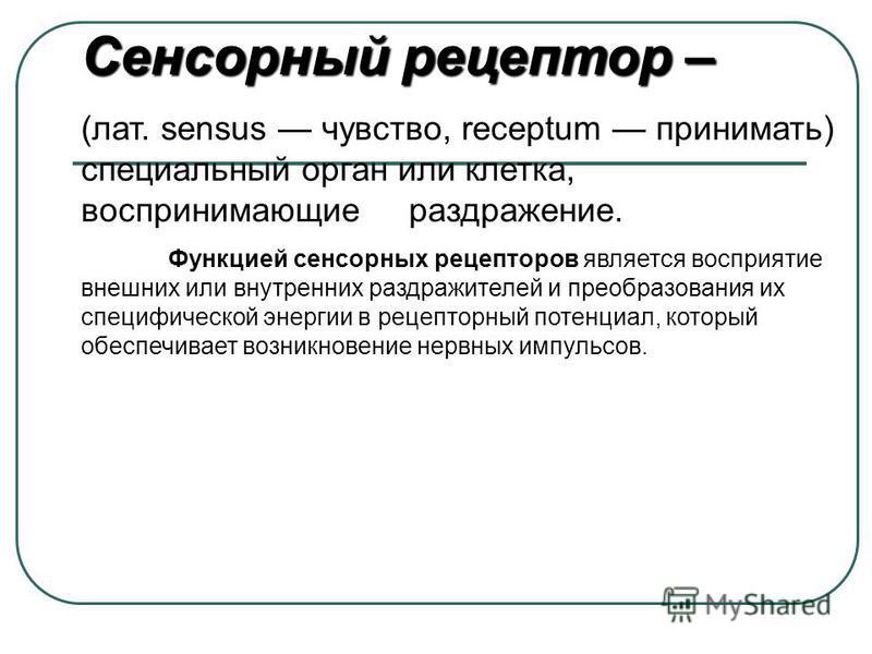 Сенсорный рецептор – (лат. sensus чувство, receptum принимать) специальный орган или клетка, воспринимающие раздражение. Функцией сенсорных рецепторов является восприятие внешних или внутренних раздражителей и преобразования их специфической энергии