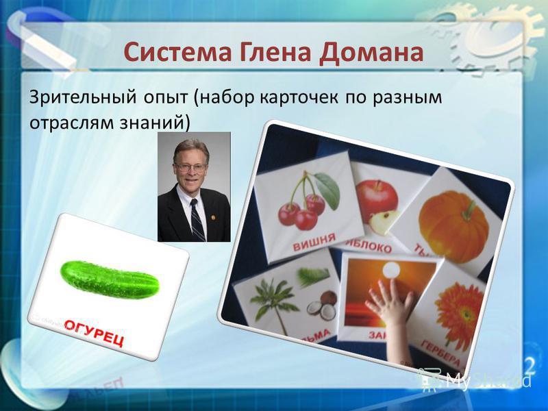 Система Глена Домана Зрительный опыт (набор карточек по разным отраслям знаний)