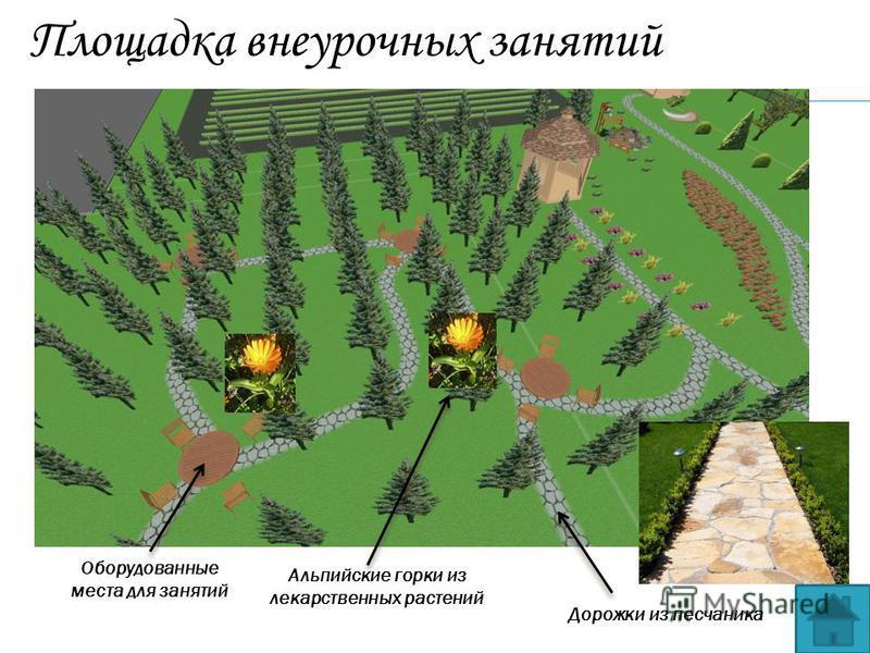 Площадка внеурочных занятий Альпийские горки из лекарственных растений Оборудованные места для занятий Дорожки из песчаника