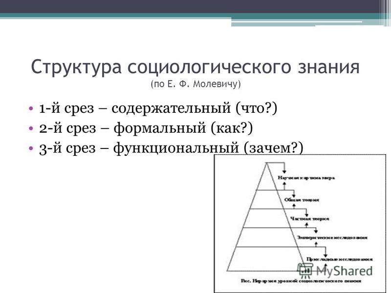 Структура социологического знания (по Е. Ф. Молевичу) 1-й срез – содержательный (что?) 2-й срез – формальный (как?) 3-й срез – функциональный (зачем?)