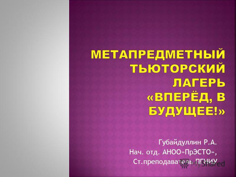 Губайдуллин Р.А. Нач. отд. АНОО»ПрЭСТО», Ст.преподаватель ПГНИУ