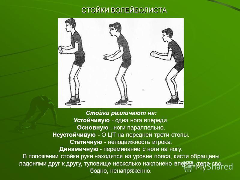 СТОЙКИ ВОЛЕЙБОЛИСТА Стойки различают на: Устойчивую - одна нога впереди. Основную - ноги параллельно. Неустойчивую - О ЦТ на передней трети стопы. Статичную - неподвижность игрока. Динамичную - переминание с ноги на ногу. В положении стойки руки нахо