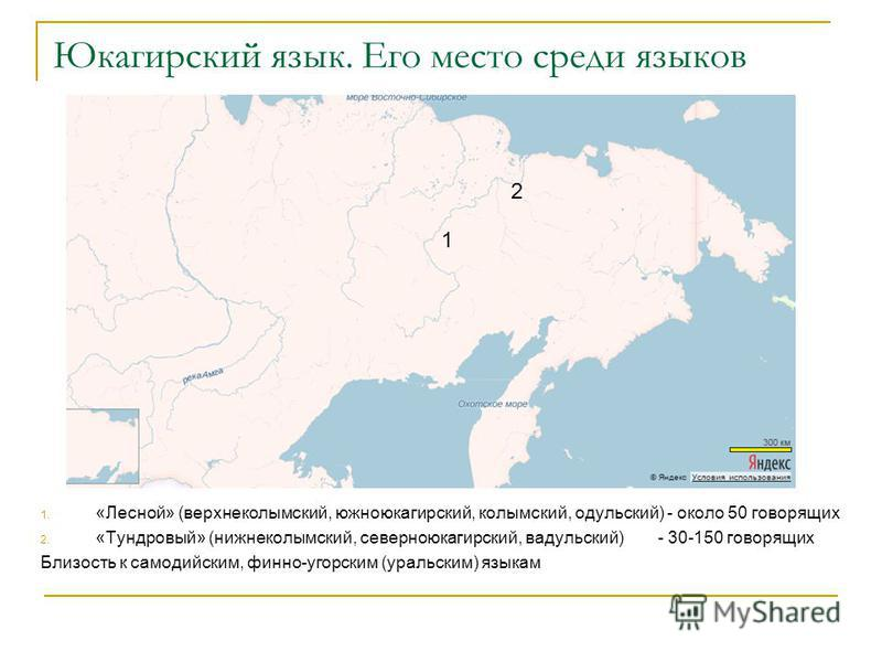 Юкагирский язык. Его место среди языков 1. «Лесной» (верхнеколымский, южно юкагирский, колымский, одульский) - около 50 говорящих 2. «Тундровай» (нижнеколымский, северноюкагирский, вадульский)- 30-150 говорящих Близость к самодийским, финно-угорским