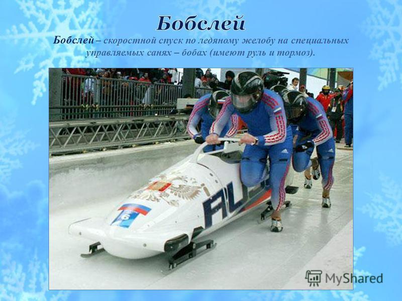 Сани – соревнования по скоростному спуску с гор по специальным ледовым трассам.