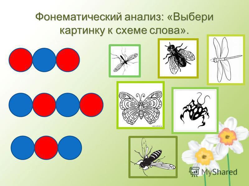 Фонематический анализ: «Выбери картинку к схеме слова».
