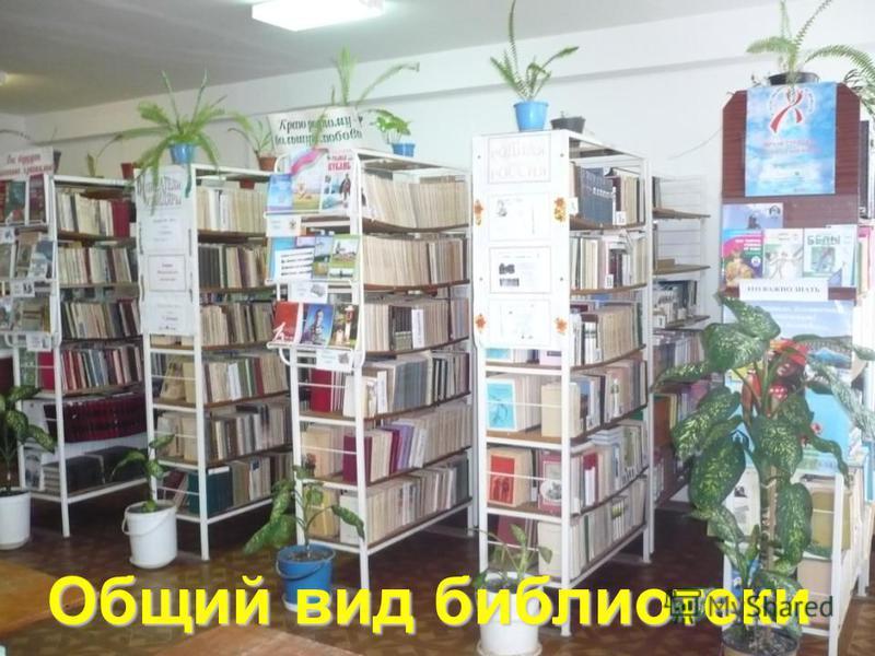 Общий вид библиотеки