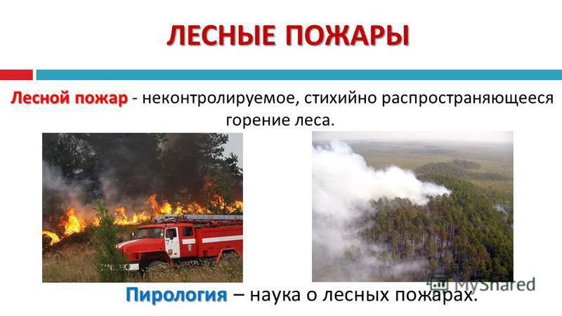 ЛЕСНЫЕ ПОЖАРЫ Лесной пожар Лесной пожар - неконтролируемое, стихийно распространяющееся горение леса. Пирология Пирология – наука о лесных пожарах.
