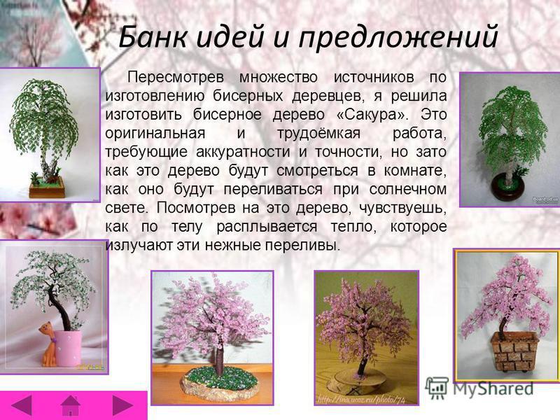 Банк идей и предложений Пересмотрев множество источников по изготовлению бисерных деревцев, я решила изготовить бисерное дерево «Сакура». Это оригинальная и трудоёмкая работа, требующие аккуратности и точности, но зато как это дерево будут смотреться