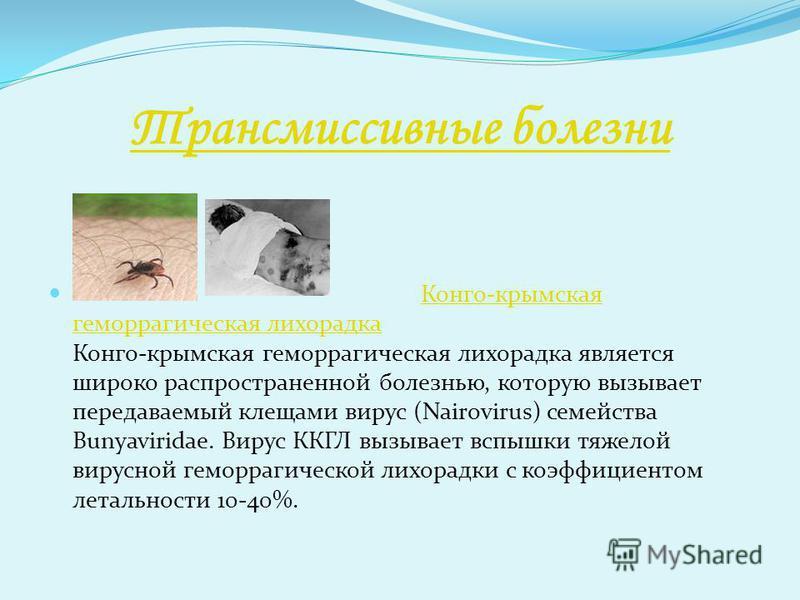 Трансмиссивные болезни Конго-крымская геморрагическая лихорадка Конго-крымская геморрагическая лихорадка является широко распространенной болезнью, которую вызывает передаваемый клещами вирус (Nairovirus) семейства Bunyaviridae. Вирус ККГЛ вызывает в