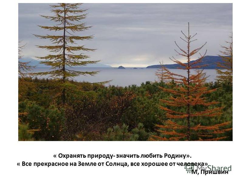 « Охранять природу- значить любить Родину». « Все прекрасное на Земле от Солнца, все хорошее от человека» М, Пришвин
