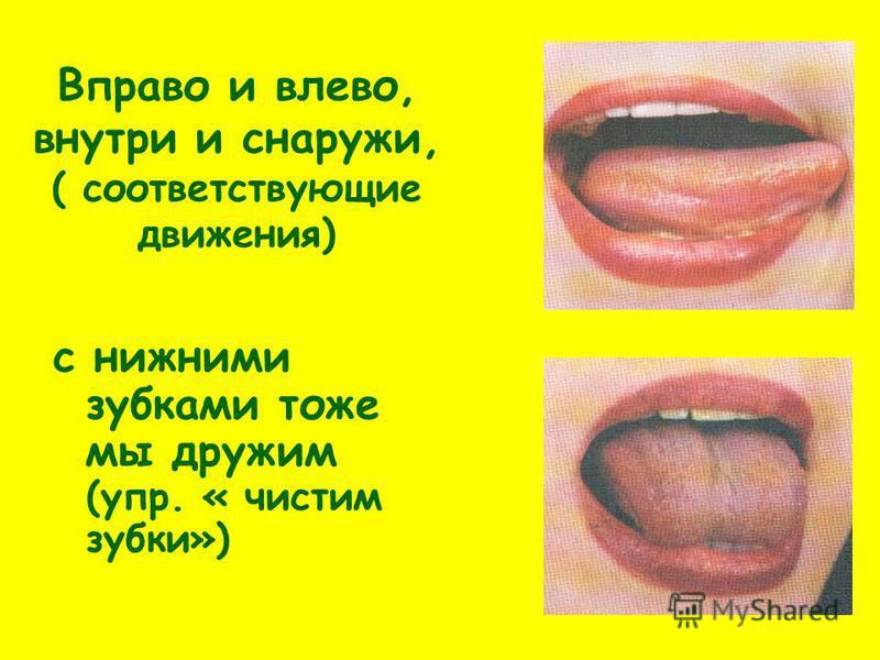 Вправо и влево, внутри и снаружи, ( соответствующие движения) с нижними зубками тоже мы дружим (упр. « чистим зубки»)