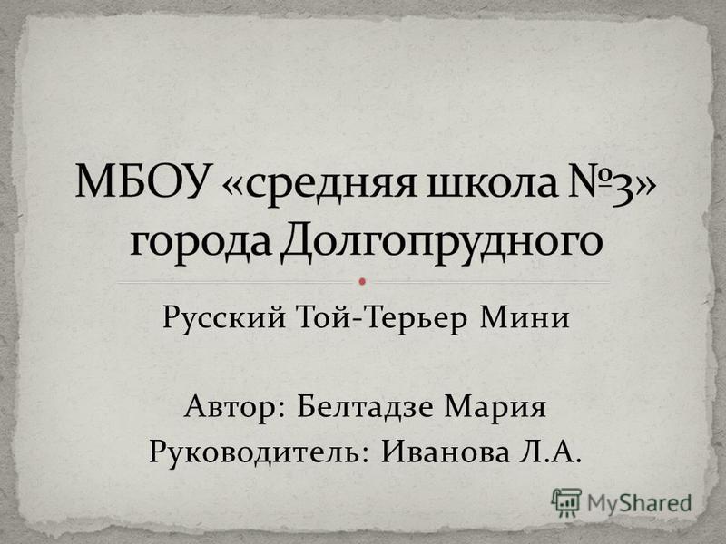 Русский Той-Терьер Мини Автор: Белтадзе Мария Руководитель: Иванова Л.А.