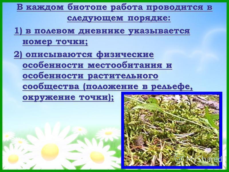 В каждом биотопе работа проводится в следующем порядке: 1) в полевом дневнике указывается номер точки; 2) описываются физические особенности местообитания и особенности растительного сообщества (положение в рельефе, окружение точки);