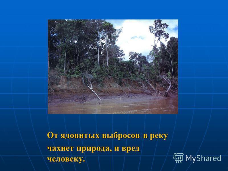 От ядовитых выбросов в реку чахнет природа, и вред человеку.
