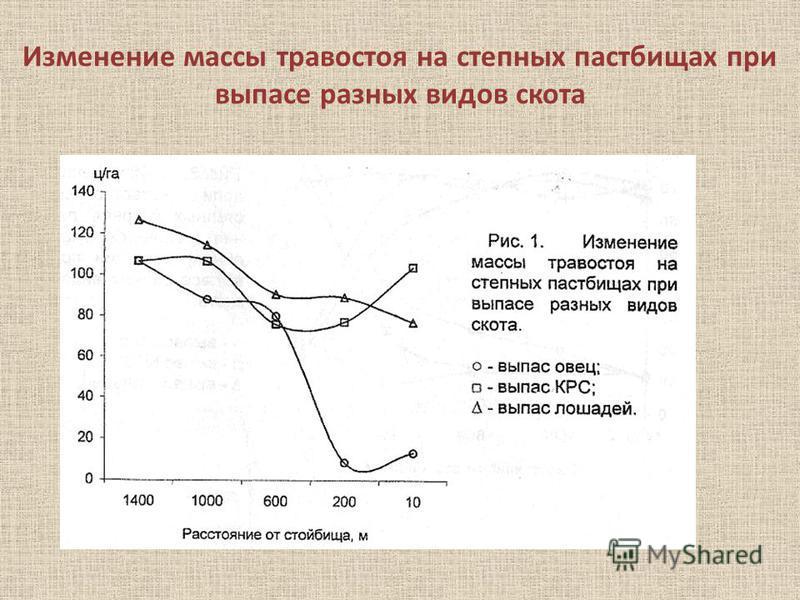 Изменение массы травостоя на степных пастбищах при выпасе разных видов скота