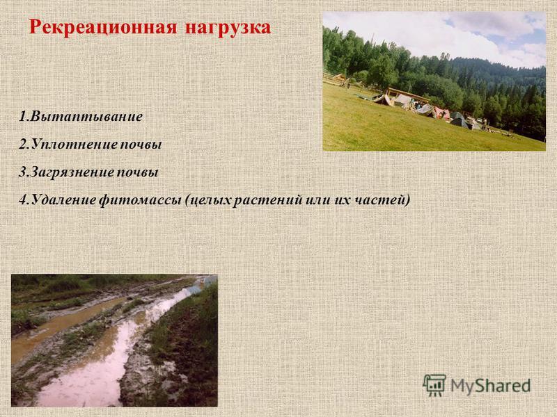 1. Вытаптывание 2. Уплотнение почвы 3. Загрязнение почвы 4. Удаление фитомассы (целых растений или их частей) Рекреационная нагрузка