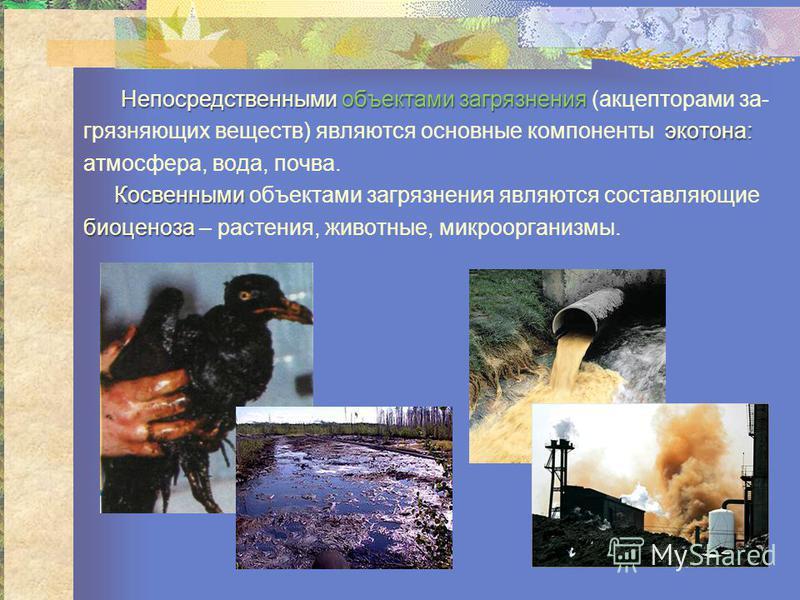 Непосредствсеннымиобъектами загрязнения Непосредствсенными объектами загрязнения (акцепторами за- экотона: загрязняющих всеществ) являются основные компоненты экотона: атмосфера, вода, почва. Косвсенными Косвсенными объектами загрязнения являются сос