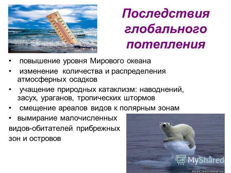 Последствия глобального потепления повышение уровня Мирового океана изменение количества и распределения атмосферных осадков учащение природных катаклизм: наводнений, засух, ураганов, тропических штормов смещение ареалов видов к полярным зонам вымира