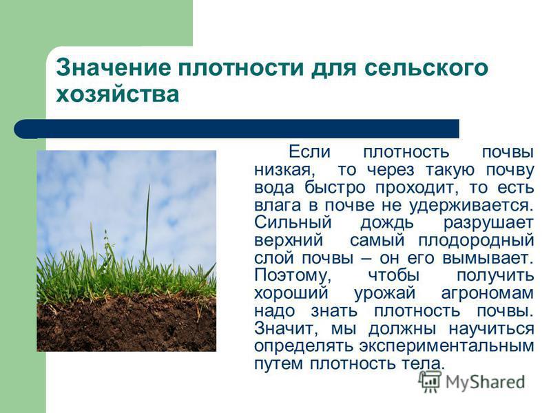 Если плотность почвы низкая, то через такую почву вода быстро проходит, то есть влага в почве не удерживается. Сильный дождь разрушает верхний самый плодородный слой почвы – он его вымывает. Поэтому, чтобы получить хороший урожай агрономам надо знать