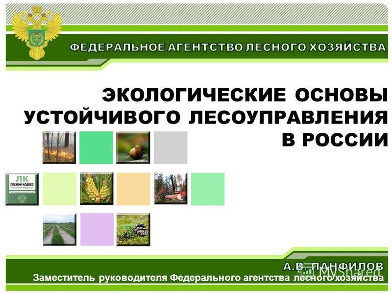 ЭКОЛОГИЧЕСКИЕ ОСНОВЫ УСТОЙЧИВОГО ЛЕСОУПРАВЛЕНИЯ В РОССИИ