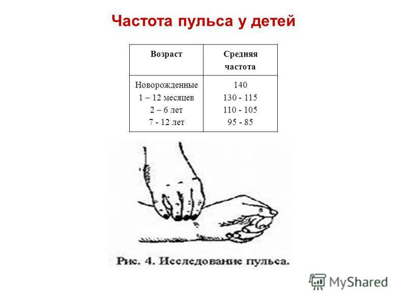 Возраст Средняя частота Новорожденные 1 – 12 месяцев 2 – 6 лет 7 - 12 лет 140 130 - 115 110 - 105 95 - 85 Частота пульса у детей