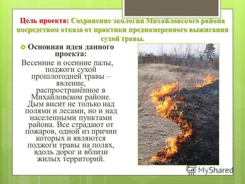 Цель проекта: Сохранение экологии Михайловского района посредством отказа от практики преднамеренного выжигания сухой травы. Основная идея данного проекта: Весенние и осенние палы, поджоги сухой прошлогодней травы – явление, распространённое в Михайл