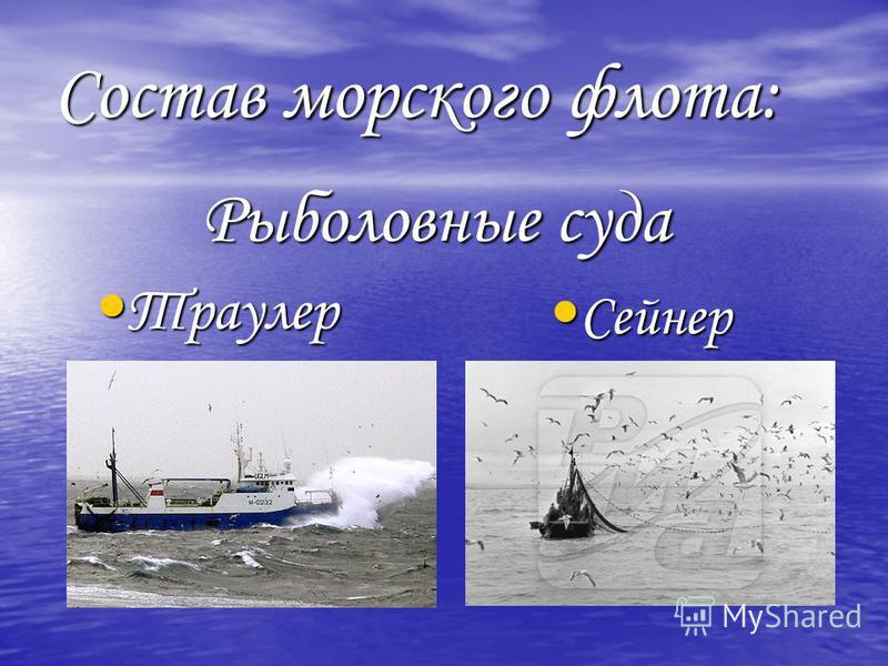 Состав морского флота: Рыболовные суда Траулер Траулер Сейнер Сейнер