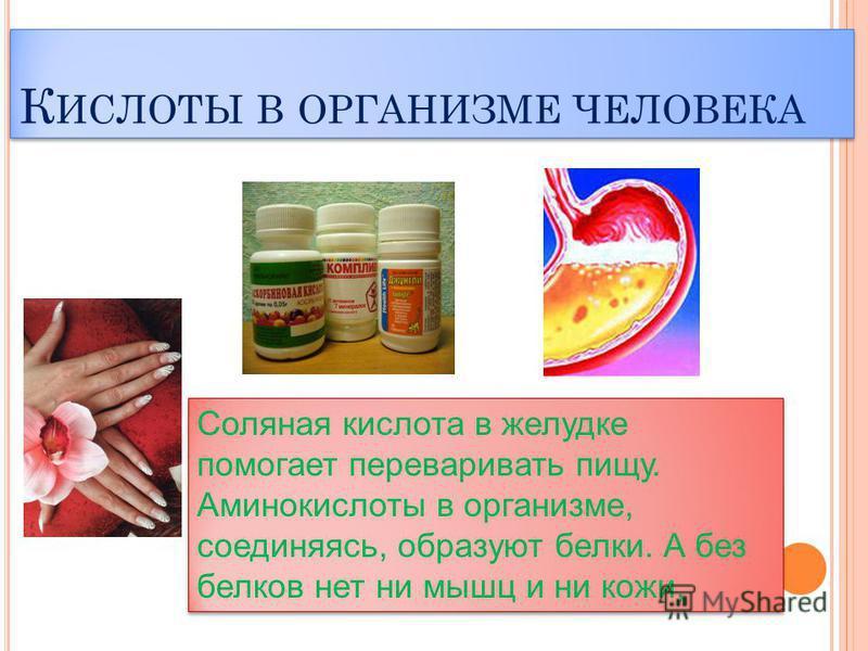 К ИСЛОТЫ В ОРГАНИЗМЕ ЧЕЛОВЕКА Соляная кислота в желудке помогает переваривать пищу. Аминокислоты в организме, соединяясь, образуют белки. А без белков нет ни мышц и ни кожи, Соляная кислота в желудке помогает переваривать пищу. Аминокислоты в организ