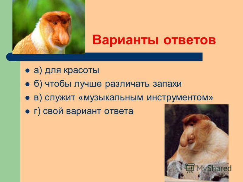 Варианты ответов а) для красоты б) чтобы лучше различать запахи в) служит «музыкальным инструментом» г) свой вариант ответа