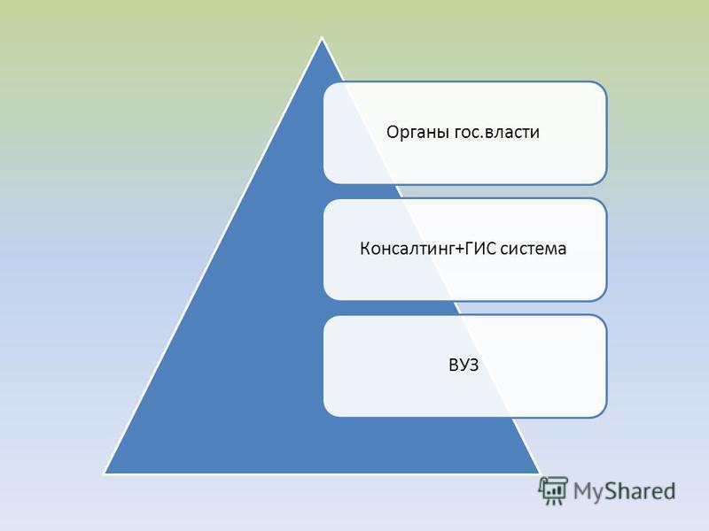 Органы гос.власти Консалтинг+ГИС системаВУЗ